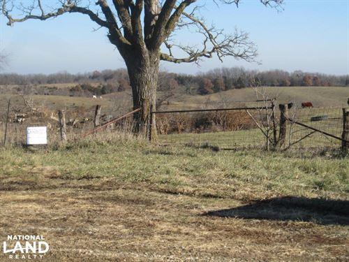 Queen City Pasture & Hunting : Queen City : Schuyler County : Missouri