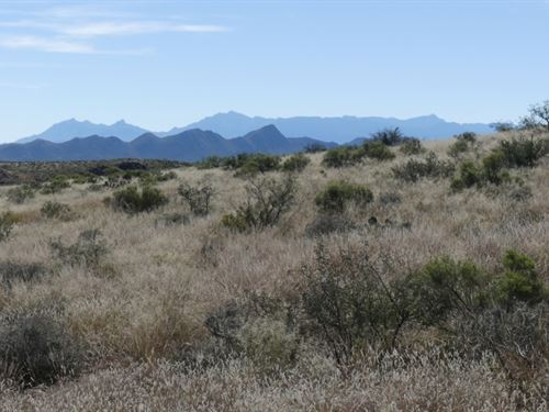 Jack Eden Mesa Hunting Property : Terlingua : Brewster County : Texas