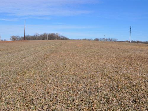 Dekalb County Crp Farm, High : King City : Dekalb County : Missouri