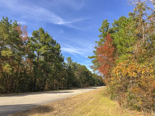 147 Ac Waterwood : Huntsville : San Jacinto County : Texas