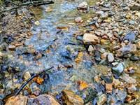 State Forest Creek Property : Morganton : Burke County : North Carolina