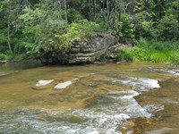 29 Acres For $39,900 State Forest : Morganton : Burke County : North Carolina