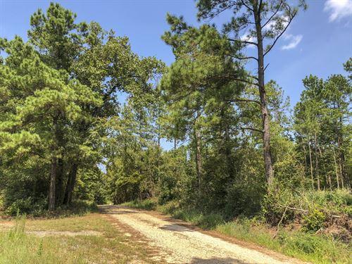 89 Ac Cr 1488 : Center : Shelby County : Texas