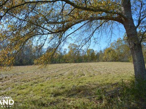 Chelsea Farm And Homesite : Chelsea : Shelby County : Alabama