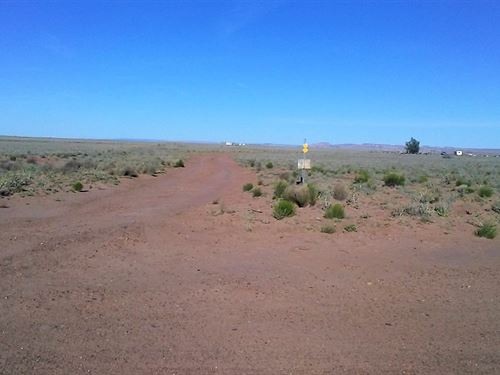 Beautiful Land, 8 Adjoining Lots : Sun Valley : Navajo County : Arizona