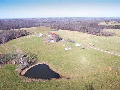 Premium 198 Ac, Working Cattle Farm : Crossville : Cumberland County : Tennessee