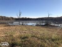 Yalobusha County Lake And Timber : Coffeeville : Yalobusha County : Mississippi