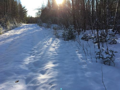 Acreage For Sale In Rural Maine : Prentiss : Penobscot County : Maine