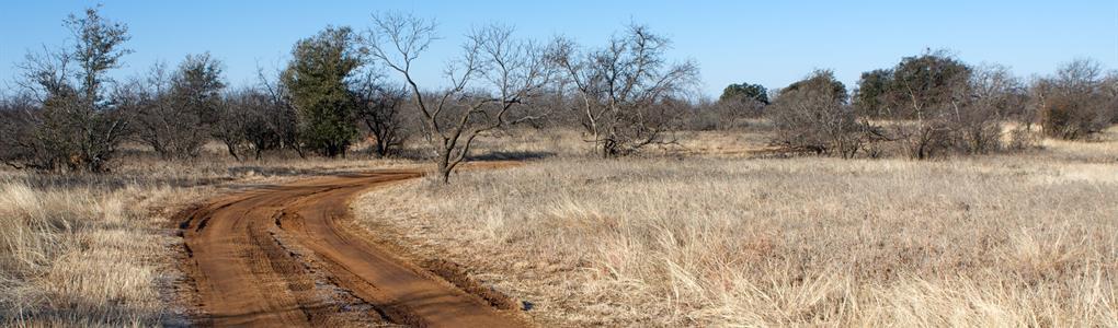 20 Acs $188/Mo, $0 Dn, Flat Land : Cornudas : Hudspeth County : Texas