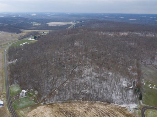 Black Run Rd, 66 Acres : Nashport : Muskingum County : Ohio