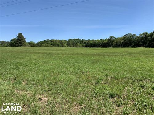 Ramsey Road Farm Tract : Grand Bay : Mobile County : Alabama