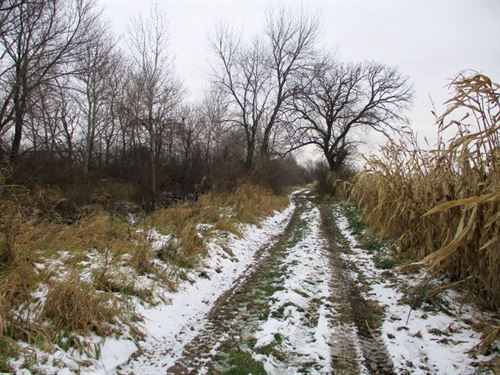 80 Ac Prime Farmland, Dodge Co, Wi : Chester : Dodge County : Wisconsin