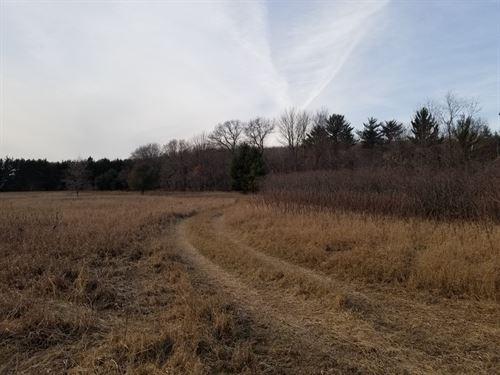 Land Hunting in Scandinavia, WI : Scandinavia : Waukesha County : Wisconsin