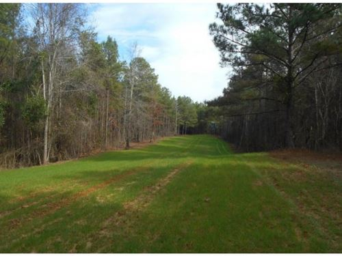 208 Acres In Montgomery County : Kilmichael : Montgomery County : Mississippi