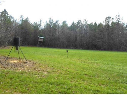 215 Acres In Montgomery County : Kilmichael : Montgomery County : Mississippi