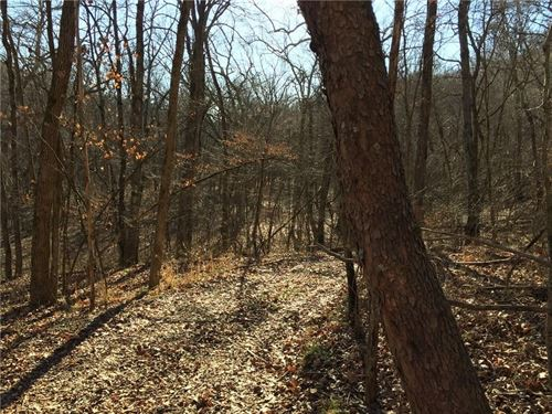 80 Acres Private Road 2217 : Washburn : Barry County : Missouri