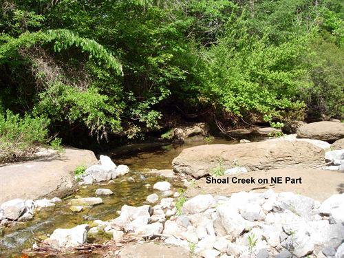 66-095 Pebble Hill Tract : Camden : Wilcox County : Alabama