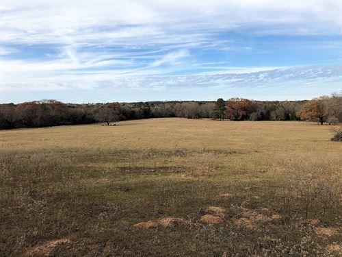 East Texas Real Estate Tyler Texas : Tyler : Smith County : Texas