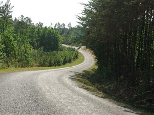 29 Acre Hunting Or Homesite : Margaret : Saint Clair County : Alabama