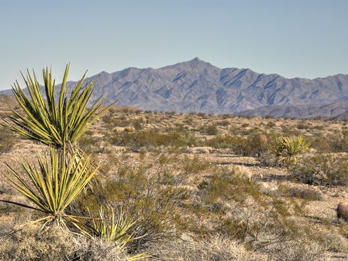 New To Market Near Lake Mead : Meadview : Mohave County : Arizona
