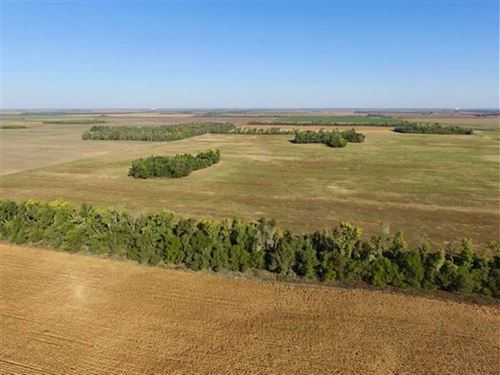 160 Acres With Dryland Tillable : Saint John : Stafford County : Kansas