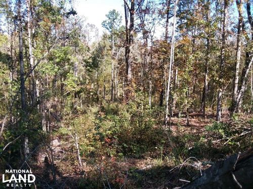 Lapine Hunting And Recreational Tra : Lapine : Montgomery County : Alabama