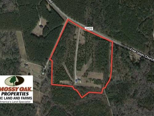Reduced, 29 Acres of Residential : Pinetown : Beaufort County : North Carolina