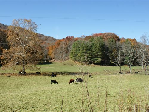 Awesome Mountain Farm With Creek : Independence : Grayson County : Virginia