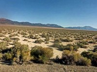 10 Acres Elko County, Nv : Elko : Elko County : Nevada