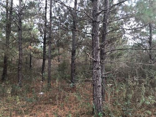 53 Acres With Creek Frontage In Tyl : Tylertown : Walthall County : Mississippi