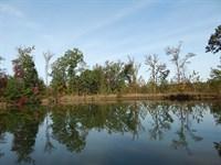 Steep Hill Branch Retreat : Norwood : Warren County : Georgia