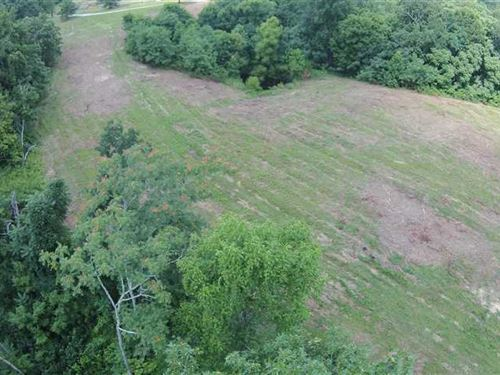 Tracts 3 & 4, 31.4 Private Acres : Breeding : Metcalfe County : Kentucky