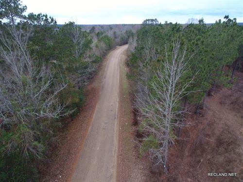 55 Ac, Timberland For Income : Farmerville : Union Parish : Louisiana