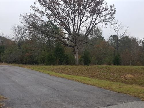 Large Tract With Hwy Frontage : Milledgeville : Baldwin County : Georgia