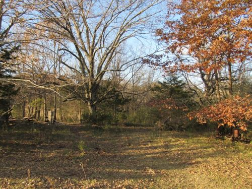 73 Acres In Panola County In Sardis : Sardis : Panola County : Mississippi
