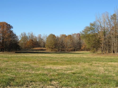 65.5 Acres In Tate County In Sarah : Sarah : Tate County : Mississippi