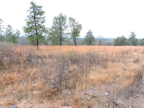 Great Hunting Property Building : Gravelly : Scott County : Arkansas