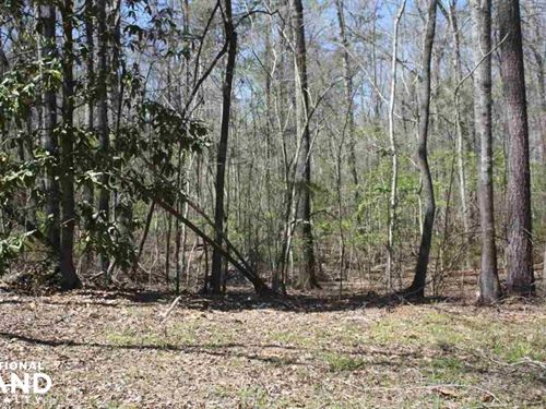 Braxton Hunting 57 : Braxton : Simpson County : Mississippi