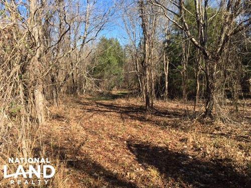 Equality Recreation & Timber Tract : Equality : Coosa County : Alabama