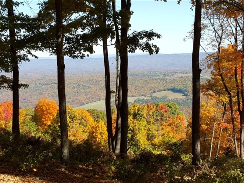 Mountain Top Retreat, Mineral : Ranch for Sale : Keyser : Mineral County :  West Virginia