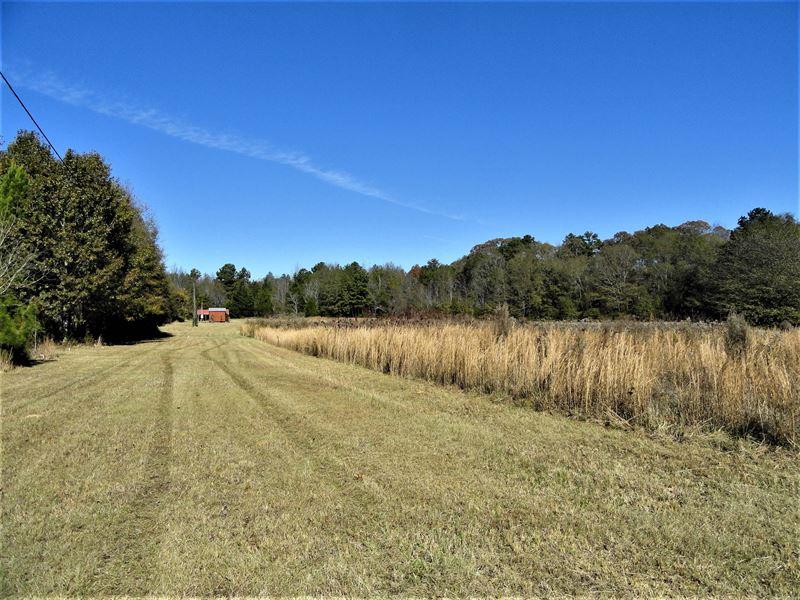Chapman Grove Minifarm Ranch For Sale In Pelzer