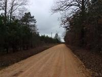Young Investment Pine Timberland : Sheridan : Grant County : Arkansas