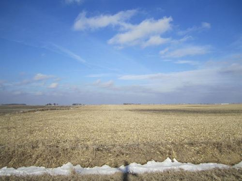 Highly Tillable Farm Land Auction : Kamrar : Hamilton County : Iowa