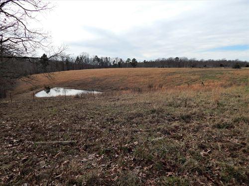10 Ac, Tennessee Land, Fenced : Waynesboro : Wayne County : Tennessee