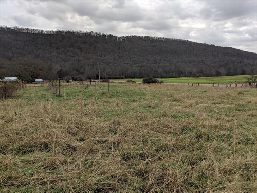 132+/- Acres Little Wills Valley : Attalla : Etowah County : Alabama