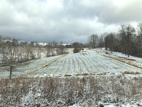 Brohard Rd, 128 Acres : Ray : Jackson County : Ohio