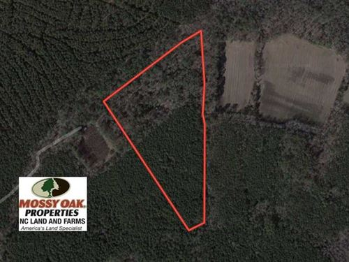 Under Contract, 23 Acres of Hunti : Machipongo : Northampton County : Virginia