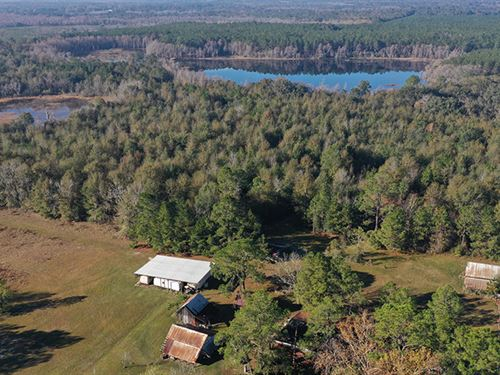Withlacoochee Recreational Tract : Pinetta : Madison County : Florida