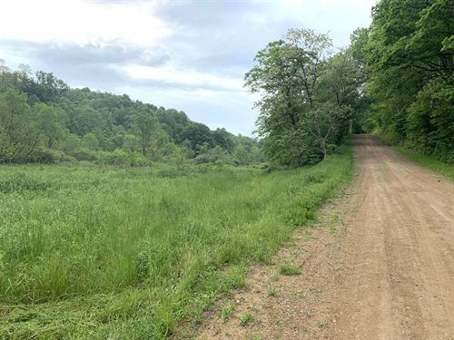 Tiny Hollow Rd, 58 Ac : Port Washington : Tuscarawas County : Ohio