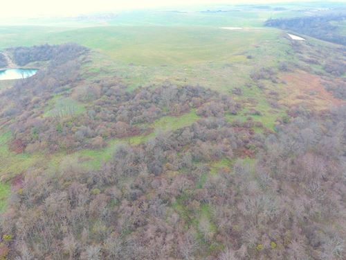 Deersville Ridge Rd, 58 Acres : Cadiz : Harrison County : Ohio